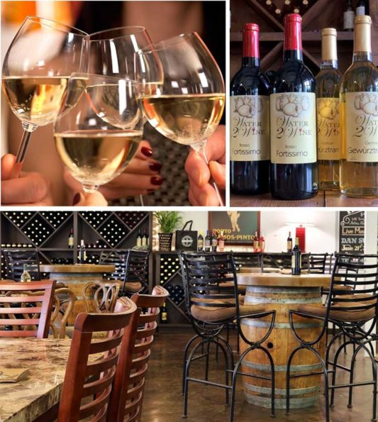 photo collage of austin winery tables and chairs bottles of wine with water 2 wine logo and women toasting with white wine