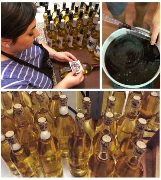small batch wine-making and wine-bottling photo collage